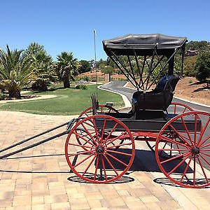 1800's Vintage Horse Drawn Doctor's Buggy